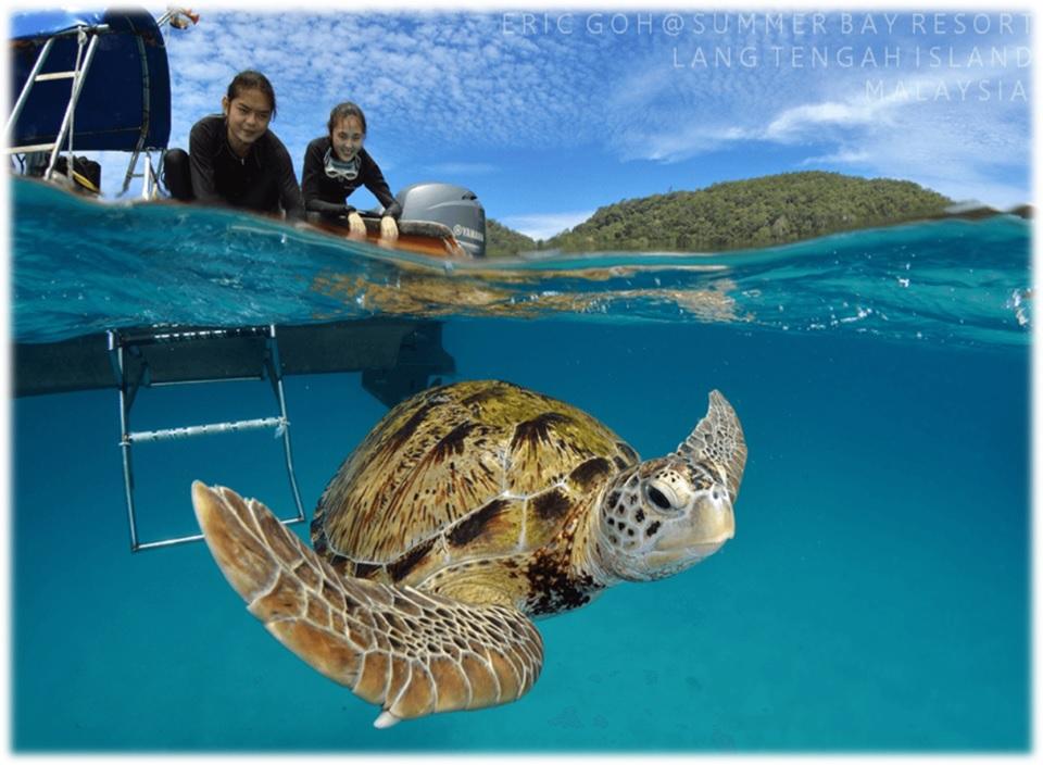 マレーシア離島ダイビングスポット